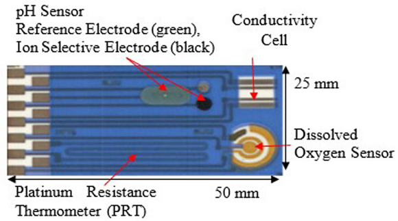 Fig. 5: Thick film multisensory array for subcutaneous deployments. It has conductivity, pH, temperature and oxygen sensors all incorporated on the same substrate.