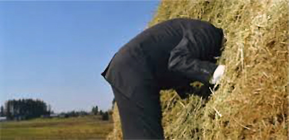 Fig. 3: Finding the biometric is like finding a needle in a haystack.