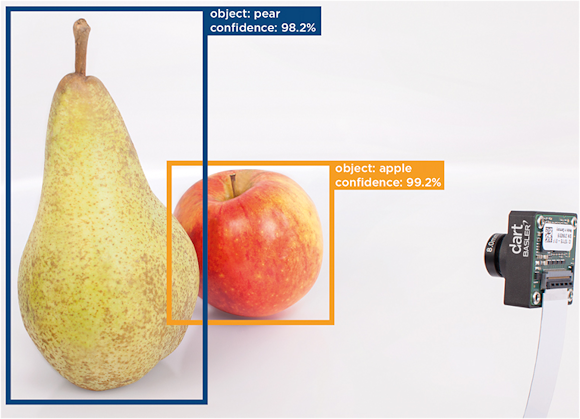 Fig. 1: A trained system can locate the object and determine its nature with a high accuracy. Here the camera looks at an apple and a pear.