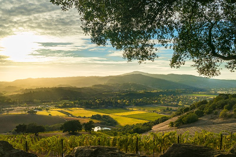 Sonoma Valley // Photo by KarenWibbs/iStock/Getty Images Plus/Getty Images