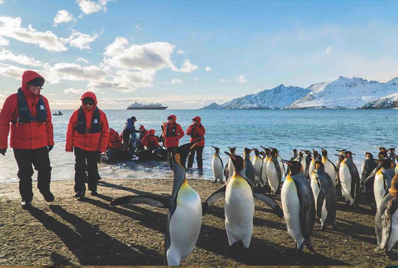 Classic Journeys, Silversea Partner on Patagonia & Antarctica Solar Eclipse Trip | Luxury Travel Advisor