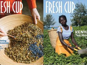 Fresh-Cup-1.jpg