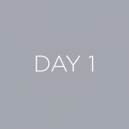 Day 1 Gray Box