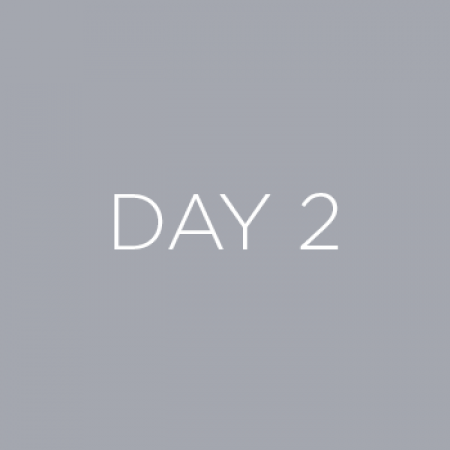 Day2Img
