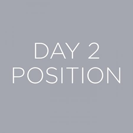 Day 2 Gray Logo