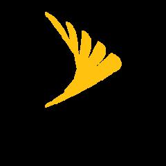 Sprint Business