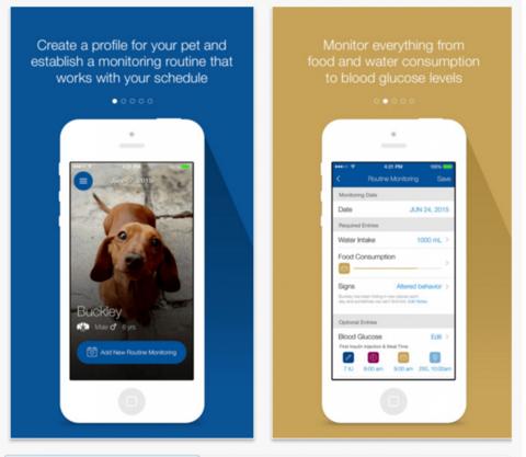 Merck diabetes app for pets