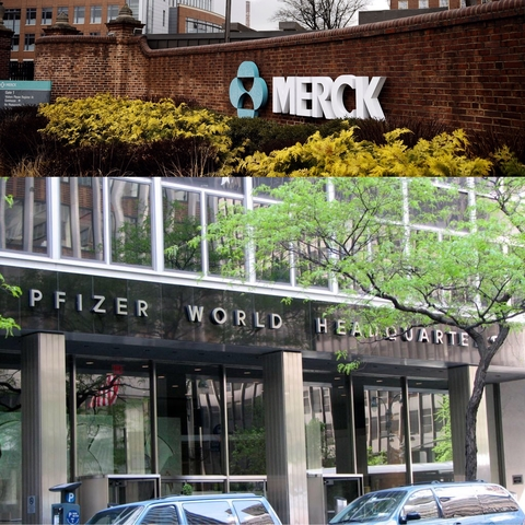 Merck Pfizer combo