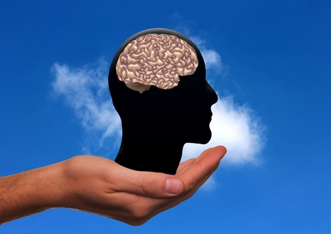 Head with brain in cupped hand