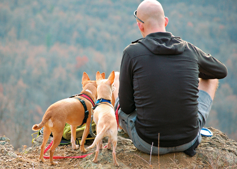 Advise clients traveling with their dog(s) to ask hotel staff for the location of nearby parks and such.