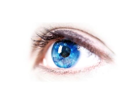 KalVista Eye Image