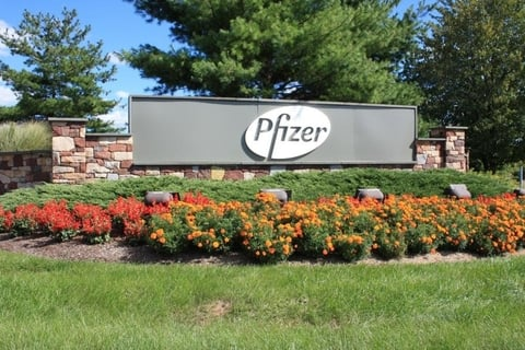 Pfizer S Eucrisa Beats Dupixent To The Dtc Punch In Eczema Thanks