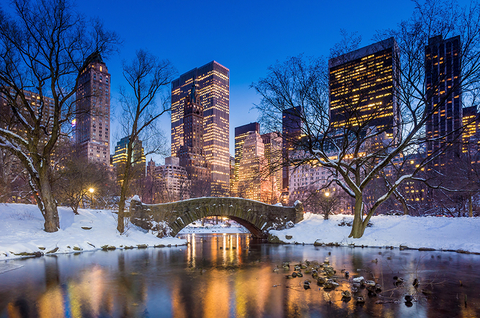 Holiday Events At The Pierre In New York City Luxury Travel Advisor