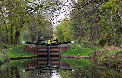 Canal Lock in Surrey England