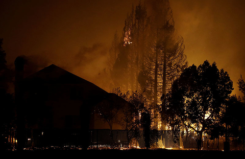 Trees burn behind houses in a residential area in Santa Rosa, CA