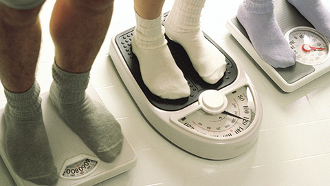 Strong nutrition and exercise regimens are not surprisinglynbspthe keys to a successful weightloss program the survey said Currently incrementednbspworkouts and caloric restrictions remain popular weightcontrol solutions with trainers