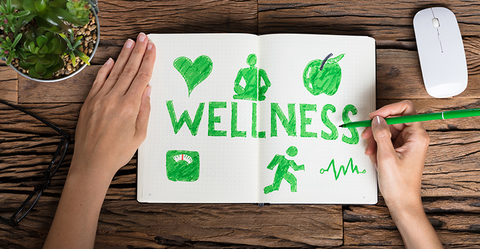 Wellness Notebook