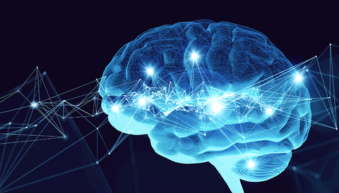 Cardio Exercise Can Improve Brain Function, New Mayo Clinic Study Says |  ClubIndustry