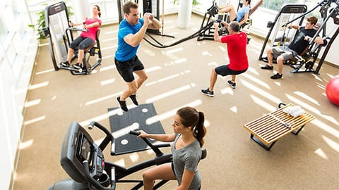 Brunswick39s fitness segment reported operating earnings of 201 million in the first quarter which includes 38 million in restructuring costs integration costs and purchase accounting impacts associated with the SCIFIT and Cybex acquisitions Photo courtesy Brunswick handout
