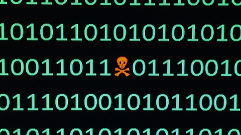 Malware comes in many forms and can be difficult to detect (Image Hailshadow / iStockPhoto)
