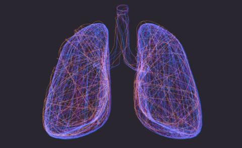 Purple lung Lungprint