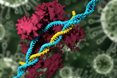 CRISPR Nanoparticle