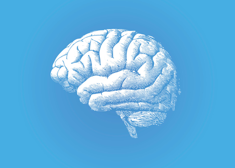 Drawing of a brain on a blue background