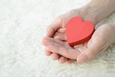 heart in hands concept