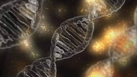 Eisai launches first startup incubator under its genomics