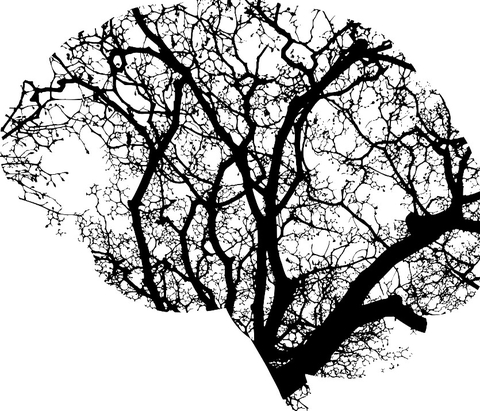 illustration of brain using branches for AI