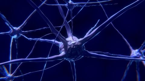 Neuroprotection agents | FierceBiotech