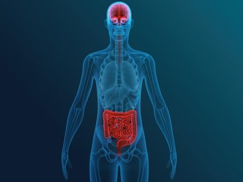 Brain-gut axis