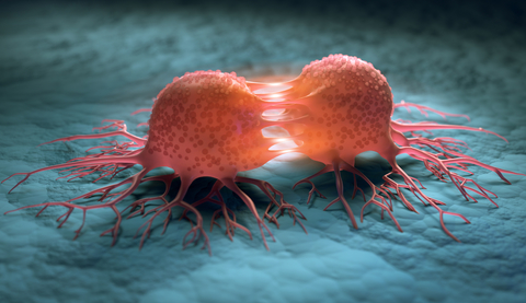 Cancer cells reproduction