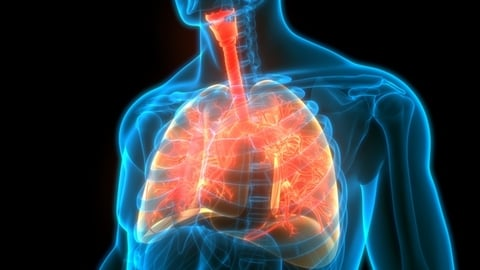 Lung Fibrosis