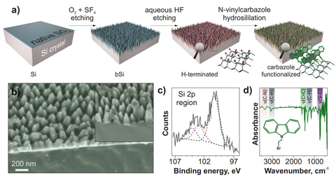 (a) Schematic illustration of the fabrication procedure. (b) Side-view SEM image.