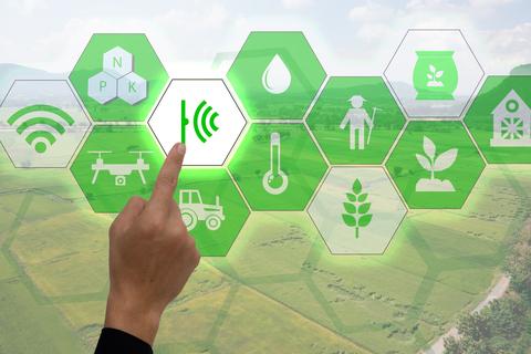 Energy Harvesting Sensors