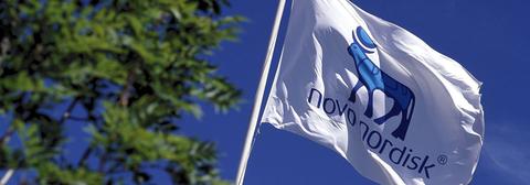 Novo Nordisk flag