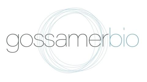 Gossamer Bio