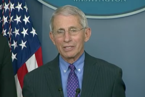 Anthony Fauci speaks at the White House on April 16, 2020
