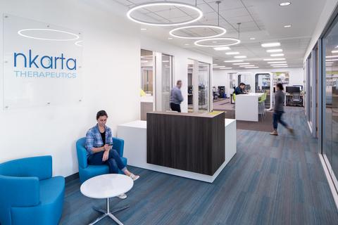 Nkarta Offices