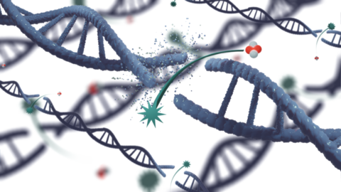 A rendering of DNA breaking at the strand