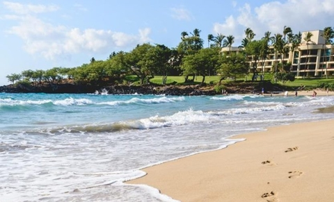 Island of Hawaii, small business owner vacation