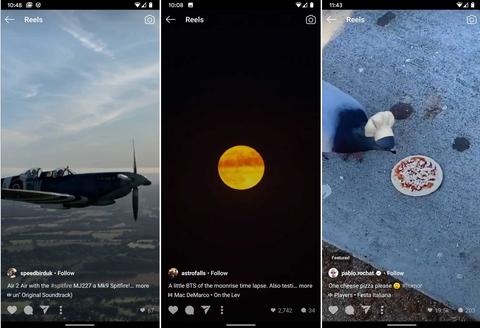 Three Instagram reels: a plane in flight, a moonrise, a bird eating pizza