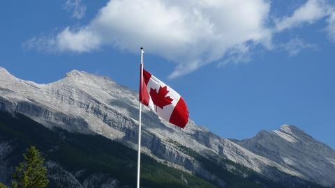 Canada flag canadian flag