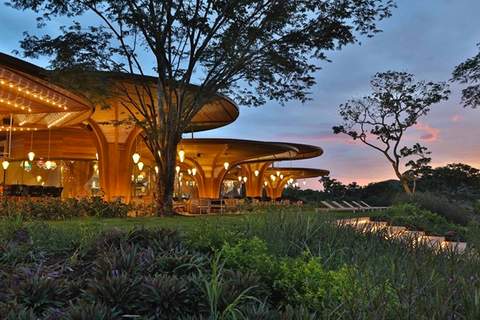 W Debuts In Costa Rica With Endemic Design Hotel Management