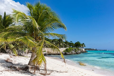 Spotts Beach Grand Cayman