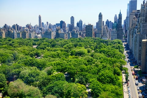 Central Park New York City - Lady-Photo/iStock/Getty Images Plus/Getty Images