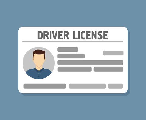 Driver's license graphic