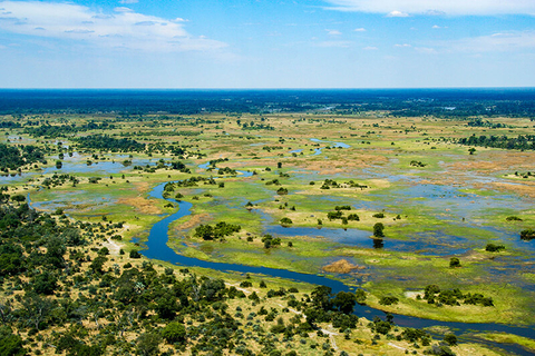 a birds-eye view of the Okavango Delta with savanna and a river