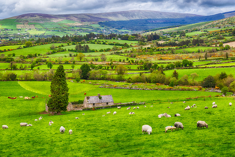 Ireland's countryside